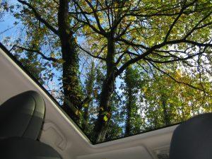 New Honda CR-V range - The panoramic sunroof is worth having.