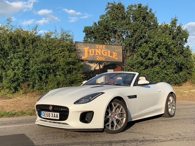 Jaguar F-Type Convertible R-Dynamic road test report and review: