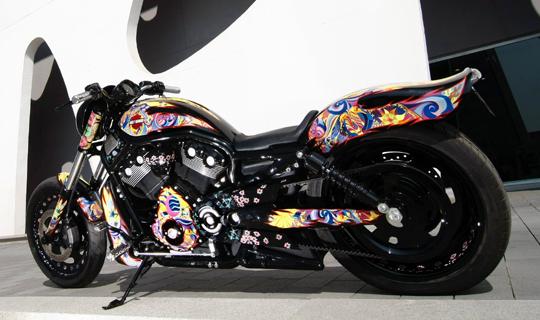 Harley Custo web